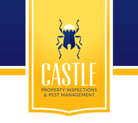 Castle_Logo_Featured